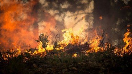 Італійців змушують не виходити з дому через пожежу у Фаенці