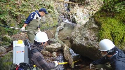Ученые-рыболовы вылавливают японского гольца.