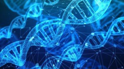 Предраковые клетки: как узнать о раке еще до симптомов