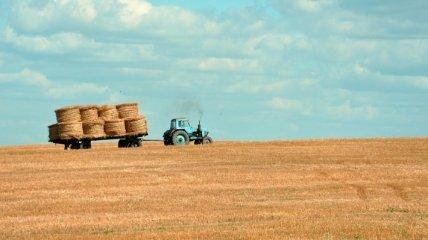 Изменения в госбюджете: как пандемия скажется на финансировании аграриев