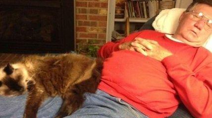 Мужчины и кошки: милые фото с проявлением мужской нежности к котам