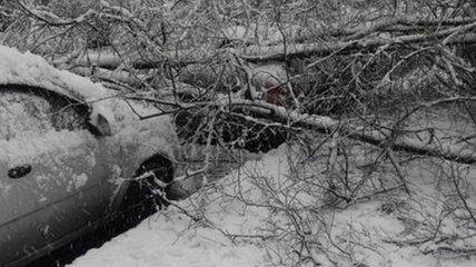Непогода обесточила 117 населенных пунктов в Украине