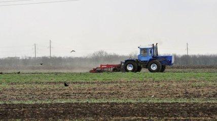 Рада продлила мораторий на продажу земель сельскохозяйственного назначения
