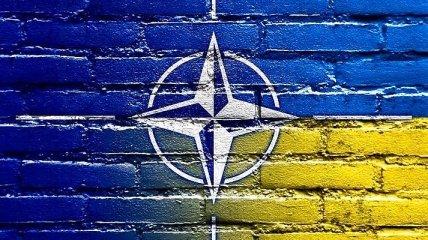 Посол Украины при НАТО: референдум малоэффективен
