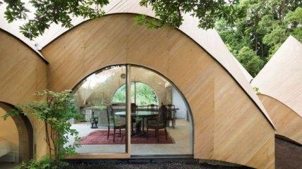 Уникальный лесной домик для пенсионеров в горах (Фото)