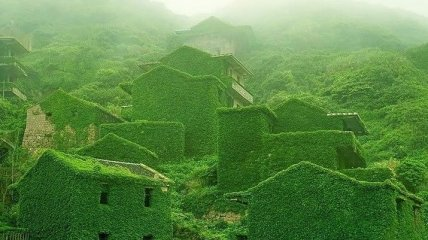 Зеленый оазис: поглощенная природой рыбацкая деревня (Фото)