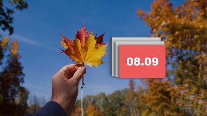 Праздник 8 сентября