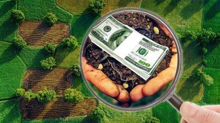 С 1 июля в Украине заработает рынок земли: что важно знать (инфографика)