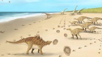 Найдены следы одного из последних динозавров: как они выглядят
