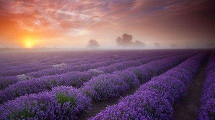 Самые живописные и красочные места нашей планеты (Фото)