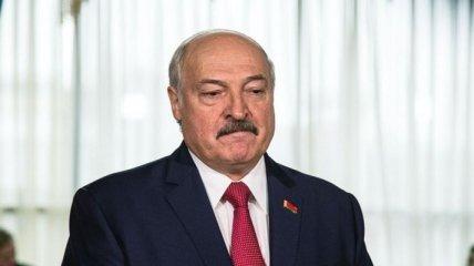 """""""Ничего нового в нем нет"""": Лукашенко впервые высказался насчет фильма о своей роскошной жизни"""