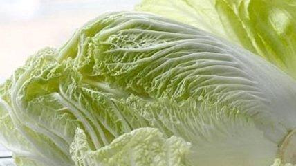 Польза и вред пекинской капусты