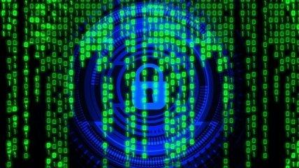 Университет в Нидерландах из-за кибератаки заплатил выкуп в размере 30 биткоинов