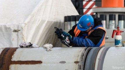 """Немецкие экоактивисты потребовали от суда остановки строительства """"Северного потока 2"""""""