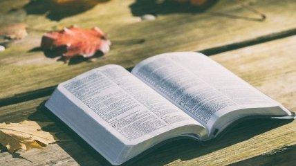 Что почитать осенью: топ-5 новинок октября 2018