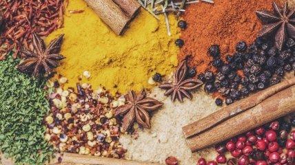 Как вылечить кашель: целебные свойства аниса, фенхеля и тмина