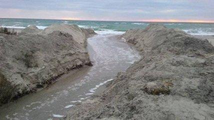 В природном парке Одесской области лиман соединили с морем (Видео)