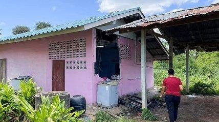 Ты не ты, когда голоден: в Таиланде слон вломился в дом за пачкой риса (видео)