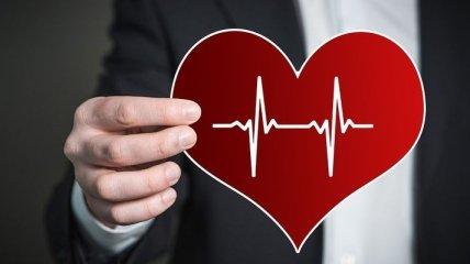 Топ-10 продуктов, полезных для сердца