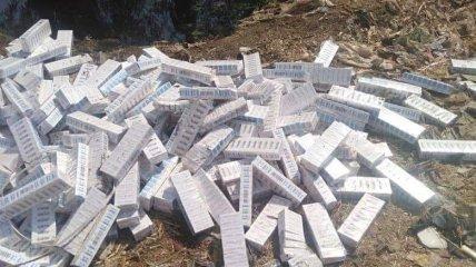 Выброшенные вакцины в Египте