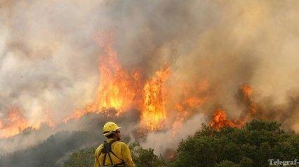 Пожар в национальном парке США