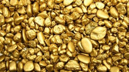 В Забайкалье задержали россиянина с 75 килограммами золота