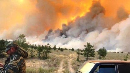 В Челябинской области огнем объяты около 5 тысяч гектаров: пожар добрался до поселков (видео)