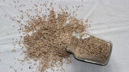 Медики объяснили, кому противопоказаны семена льна