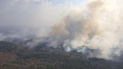 Пожары в Житомирской области: в ГСЧС рассказали, что мешает тушению