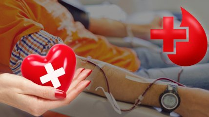 Как стать донором крови в Украине: советы и запреты (инфографика)