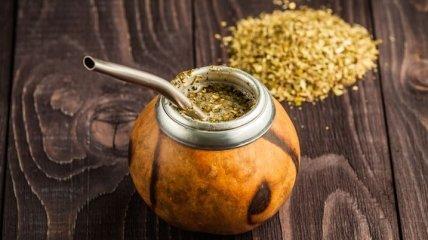 Парагвайский напиток - мате: польза и целебные свойства