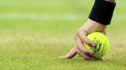 Футбольные болельщики забросали поле теннисными мячами (Видео)