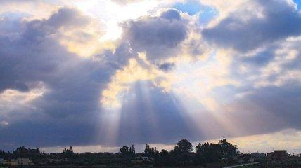 2 февраля - приметы и обряды в Ефимов день