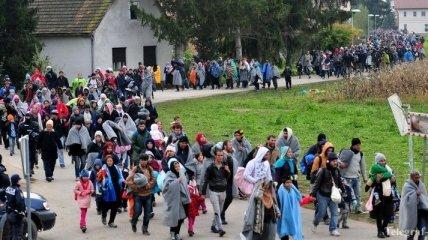В Словении число мигрантов превысило 40 тысяч человек