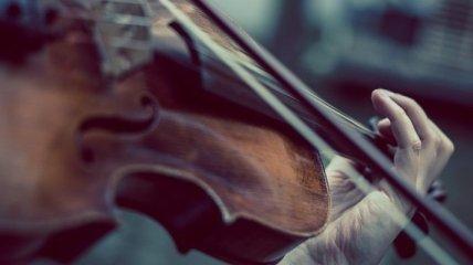 Забыл в электричке: британскому музыканту вернули скрипку XVIII века