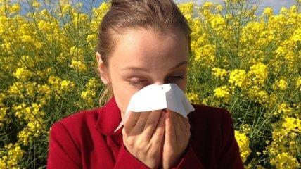 Аллергикам сулят нелегкие времена и виной тому глобальное потепление