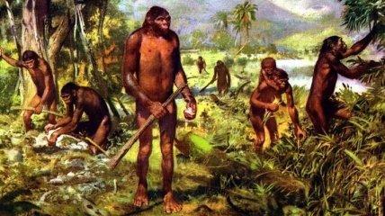 В Китае найдены древнейшие орудия предков человека