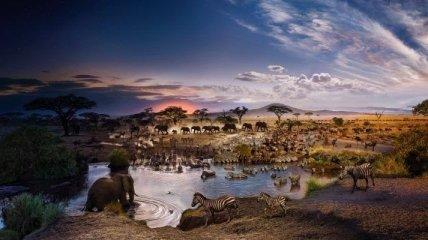 День и ночь: невероятные панорамные снимки от Стивена Уилкса (Фото)