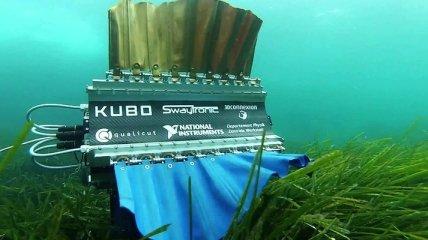 Студенты создали робота-рыбу для съемки под водой (Видео)
