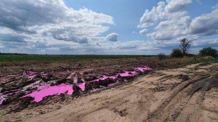 Розовые лужи на полях под Ровно: в полиции сообщили, что грозит провинившимся