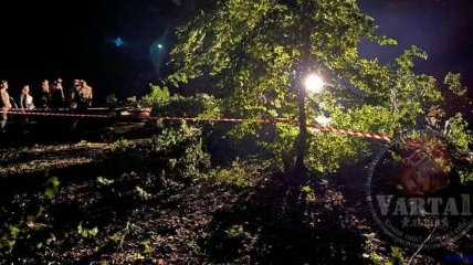 Во Львове сломавшееся из-за урагана дерево упало на парня и девушку - оба погибли на месте (фото)