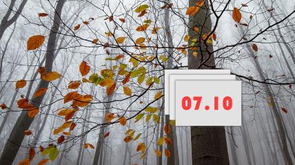 Праздник 7 октября