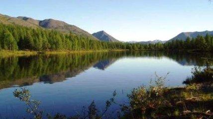 Курильский остров назвали в честь Сергея Капицы