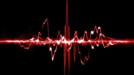Установлена зависимость длительности жизни от частоты пульса