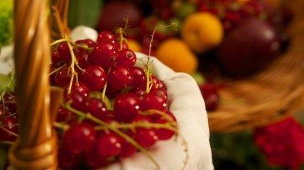 Красная смородина: полезные свойства для организма