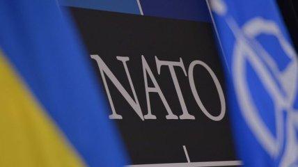 В НАТО сегодня будут обсуждать реформирование ВСУ