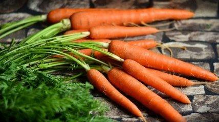 Лечение морковью: при язве, простуде, геморрое и веснушках