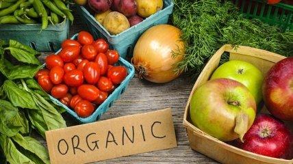 Правительство открыло реестры органической продукции