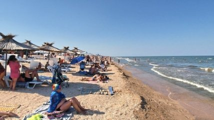 Ветер переменился: пляжи Азовского моря очистились от медуз (видео)
