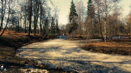 Прогноз погоды на 9 января: в Украине осадков не ожидается